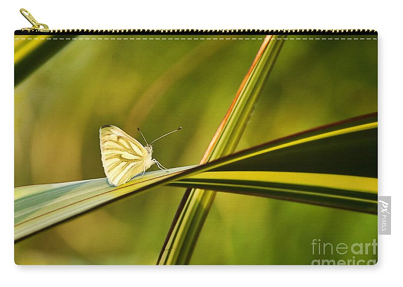 Cabbage Butterfly Carry-all Pouch featuring the photograph Cabbage Butterfly by Susie Peek