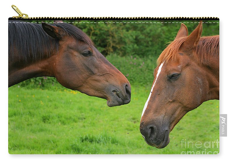 Horse Carry-all Pouch featuring the photograph Conversations by Angel Ciesniarska
