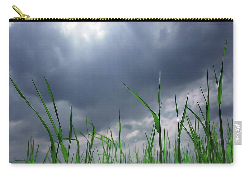 Thunderstorm Carry-all Pouch featuring the photograph Corn Plant With Thunderstorm Clouds by Silvia Otte