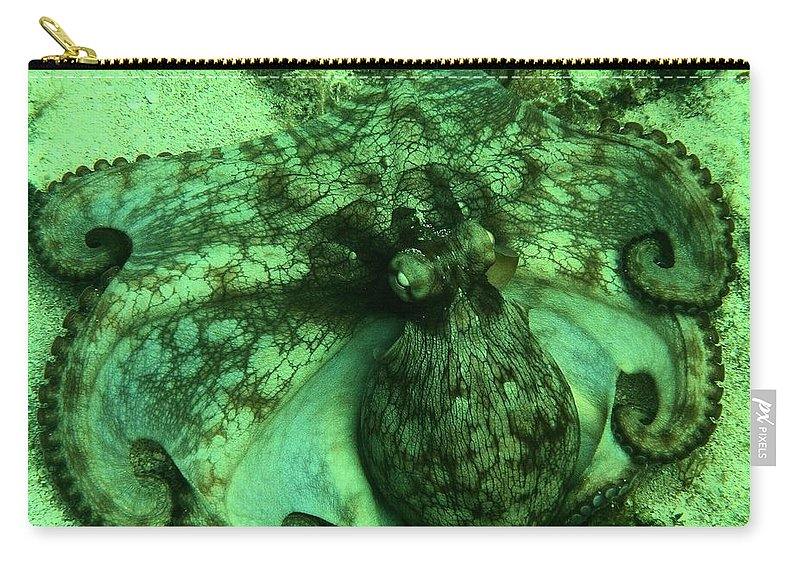 Common Octopus Carry-all Pouch featuring the photograph Cozumel Octopus by Adam Jewell