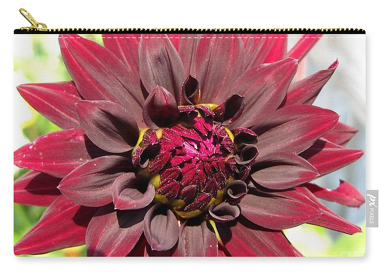 Dahlia Carry-all Pouch featuring the photograph Dahlia Named Black Wizard by J McCombie