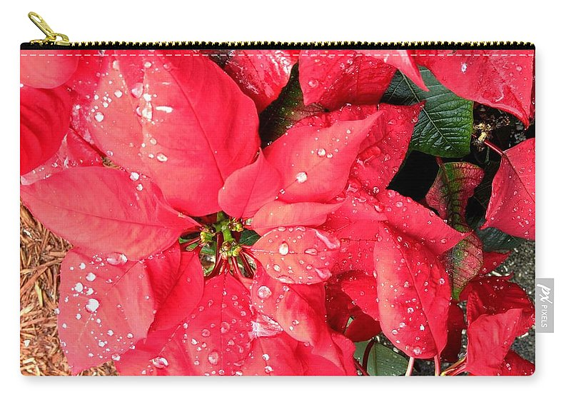 Flowers Carry-all Pouch featuring the photograph Diamond Encrusted Poinsettias by Patricia Taylor