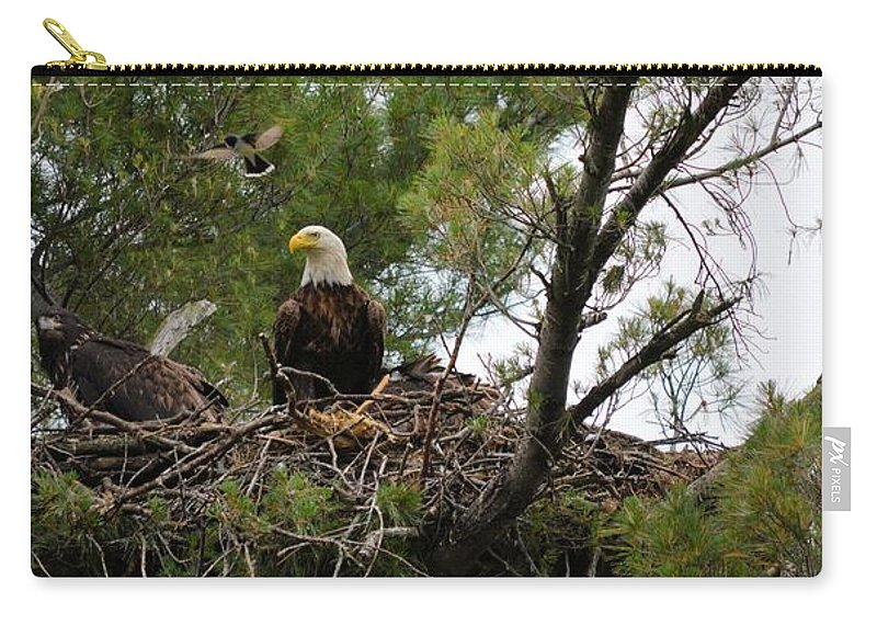 Eagle Carry-all Pouch featuring the photograph Dinner Time by Bonfire Photography