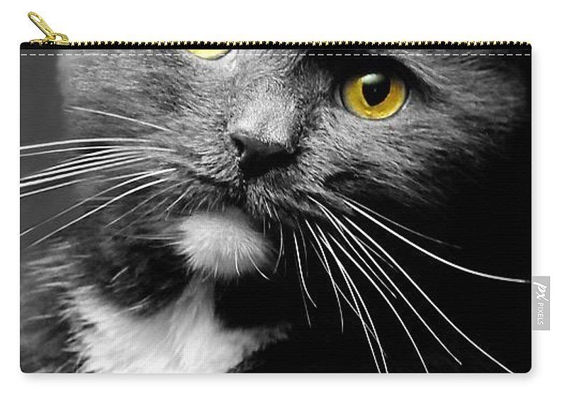 Cat Carry-all Pouch featuring the photograph Domestic Gray And White Short Hair by Diana Angstadt