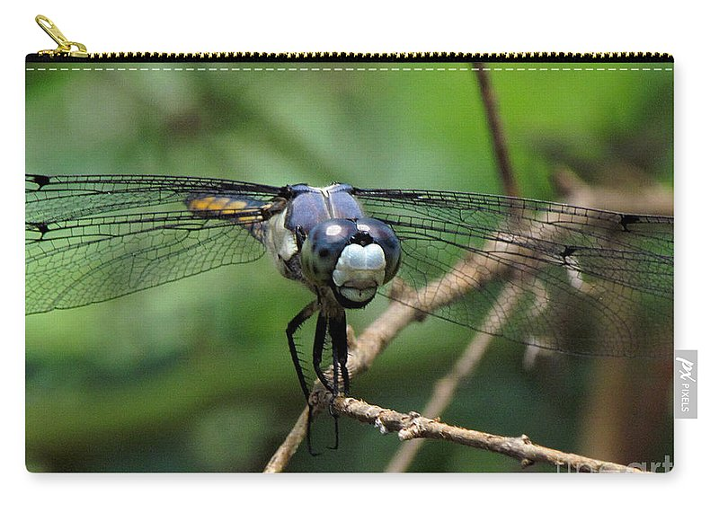 Dragonfly Carry-all Pouch featuring the photograph Dragonfly 71 by J M Farris Photography