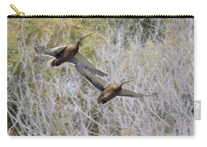 Duck Carry-all Pouch featuring the photograph Duck Season? by Bonfire Photography