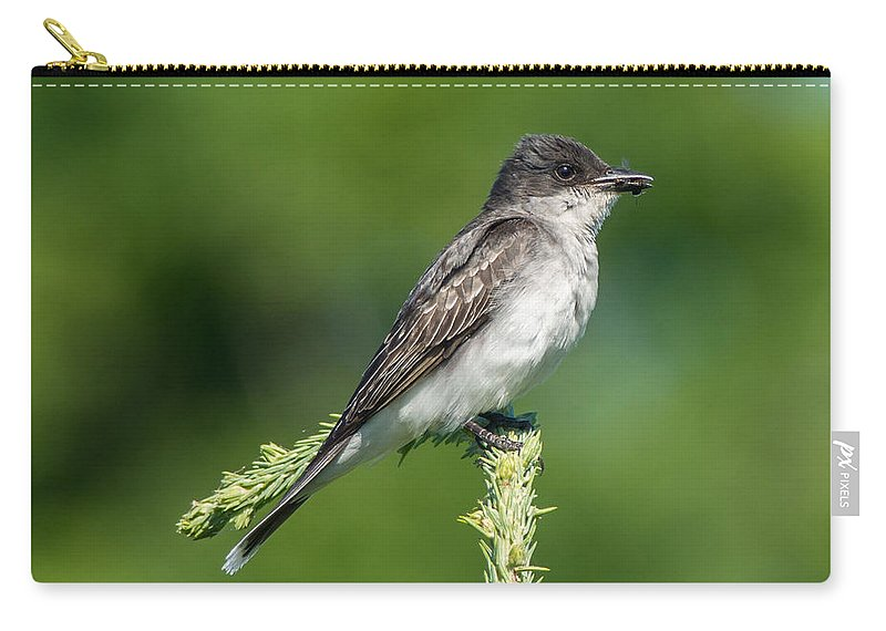 Bird Carry-all Pouch featuring the photograph Eastern Kingbird by Richard Kitchen
