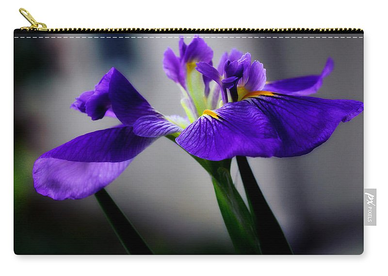 Iris Carry-all Pouch featuring the photograph Elegant Iris by Lucy VanSwearingen