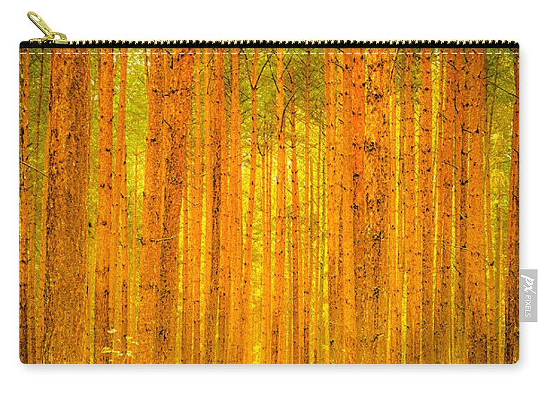 Autumn Carry-all Pouch featuring the photograph Enchanted Forest by Jivko Nakev