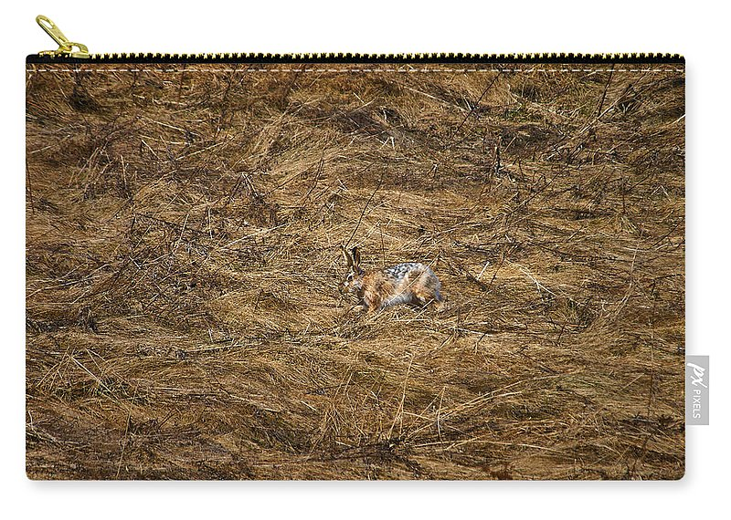 Lehto Carry-all Pouch featuring the photograph European Hare by Jouko Lehto