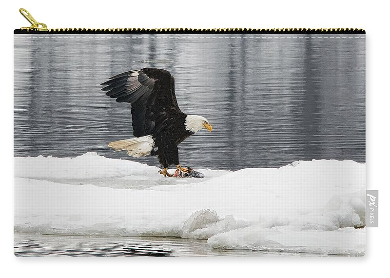 Steamboat Dock Carry-all Pouch featuring the photograph Feeding Time by Rick Kuperberg Sr