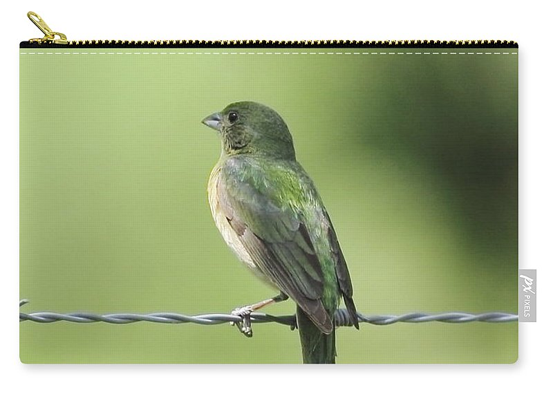 Animal Carry-all Pouch featuring the photograph Female Painted Bunting by Robert Frederick