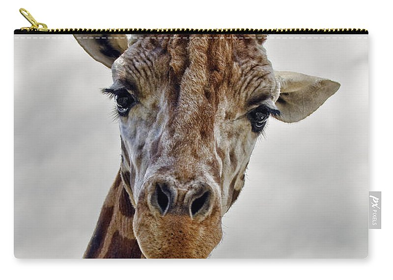 Giraffe Carry-all Pouch featuring the photograph Giraffe by Marcia Colelli