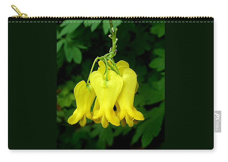 Dactylicapnos Scandens Carry-all Pouch featuring the photograph Golden Tears Vine by William Tanneberger