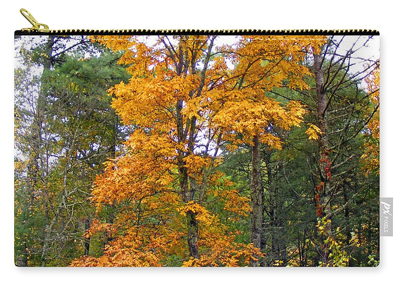 Plants Carry-all Pouch featuring the photograph Golden Tree by Duane McCullough