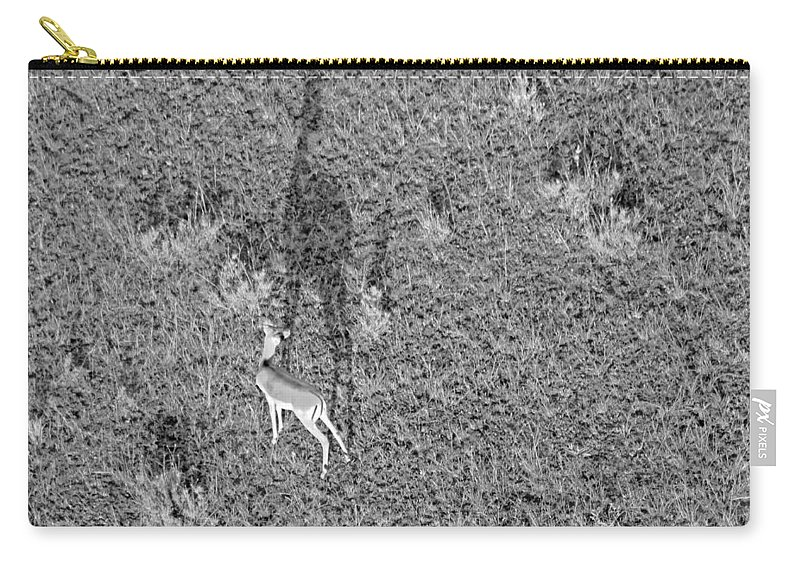 Gazelle Carry-all Pouch featuring the photograph Grants Gazelle by Tony Murtagh