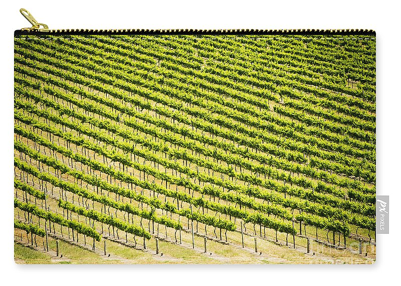 Wine Carry-all Pouch featuring the photograph Grape Vines by Tim Hester