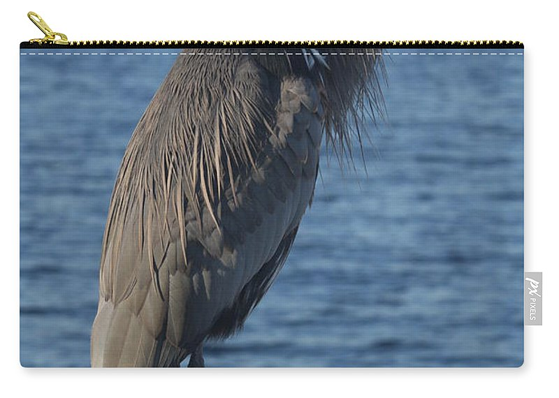 Heron Carry-all Pouch featuring the photograph Great Blue Heron by Christiane Schulze Art And Photography