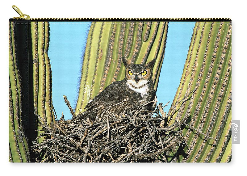 Arizona Carry-all Pouch featuring the photograph Great Horned Owl Bubo Virginianus by Tom Vezo