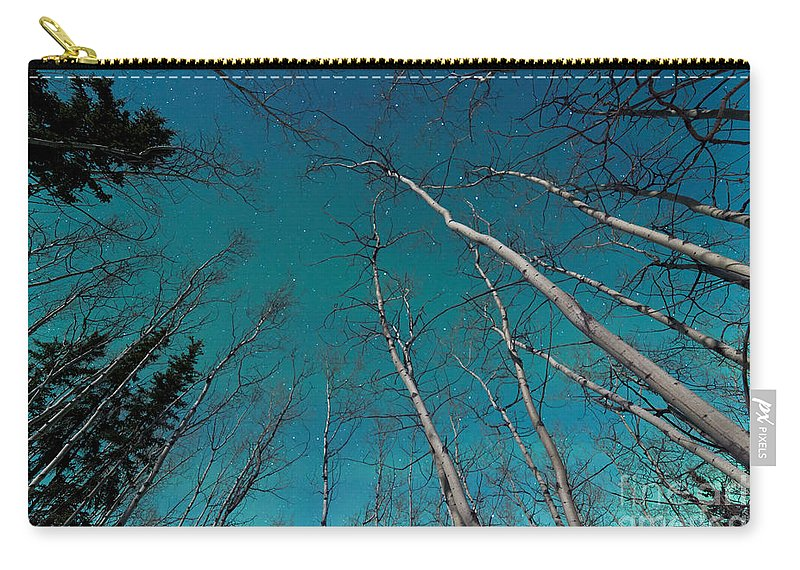Above Carry-all Pouch featuring the photograph Green Swirls Of Northern Lights Over Boreal Forest by Stephan Pietzko