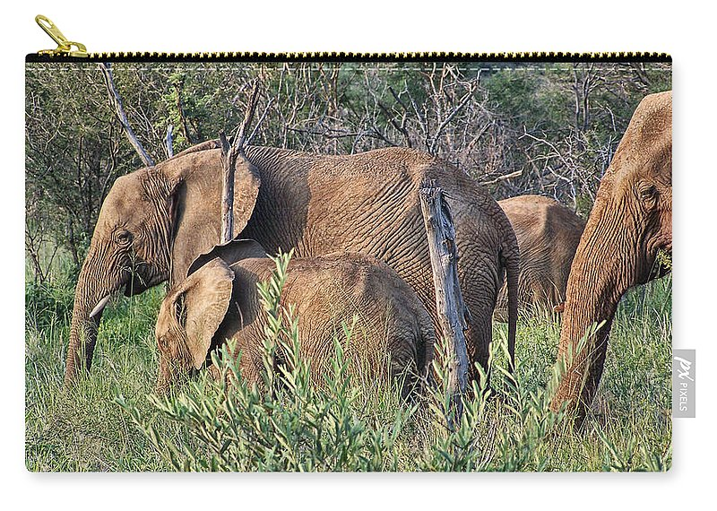 Elephant Bull Carry-all Pouch featuring the photograph Greener Pastures by Douglas Barnard