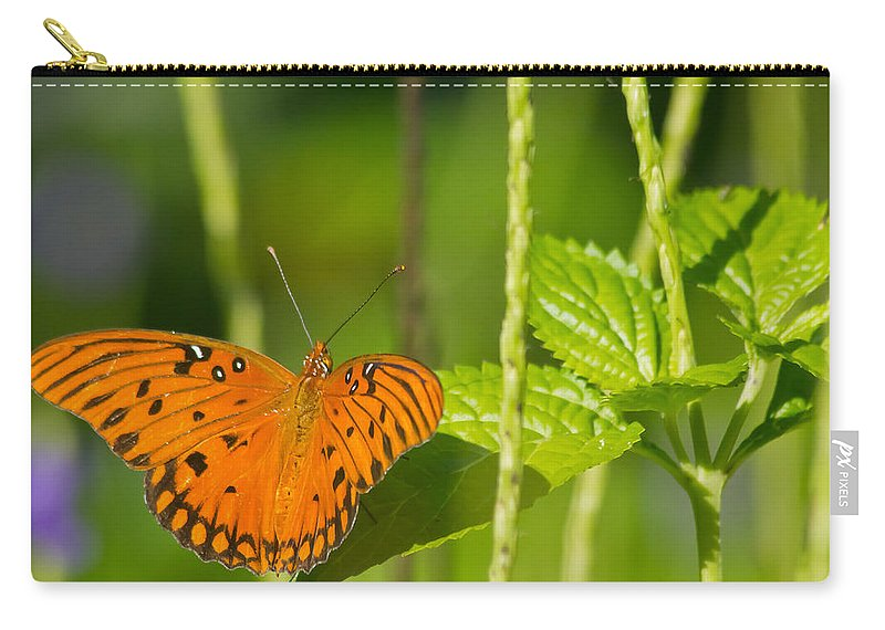 Florida Carry-all Pouch featuring the photograph Gulf Fritillary by Jane Luxton