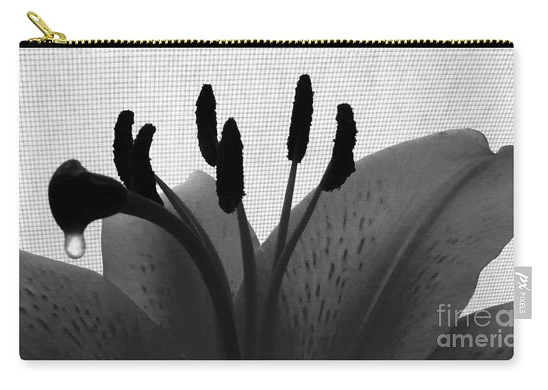 Lily Carry-all Pouch featuring the photograph 1 H Lily Nectar Drip Bw by Dale Crum