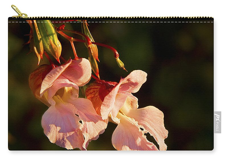 Himalayan Balsam Carry-all Pouch featuring the photograph Himalayan Balsam by Liz Leyden