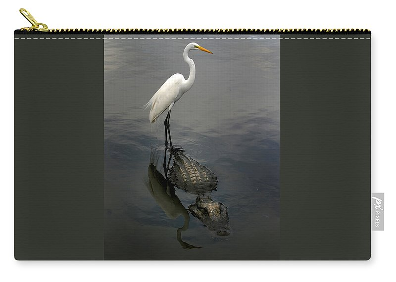 Alligator Carry-all Pouch featuring the photograph Hitch Hiker by Anthony Jones