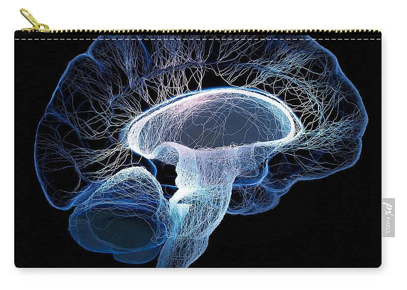 Brain Carry-all Pouch featuring the photograph Human Brain Complexity by Johan Swanepoel