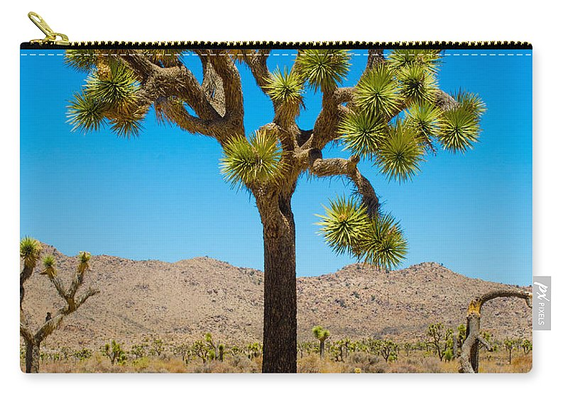 Joshua Tree Carry-all Pouch featuring the photograph Joshua Tree 28 by Alex Snay