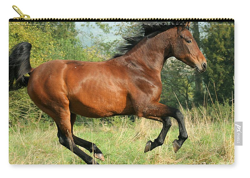 Horse Carry-all Pouch featuring the photograph Jump Jump by Angel Ciesniarska