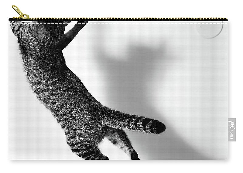 Pets Carry-all Pouch featuring the photograph Jumping Cat by Akimasa Harada