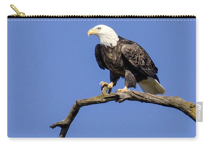 Eagle Carry-all Pouch featuring the photograph King Of The Sky by David Lester