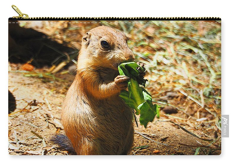 Prairie Dog Carry-all Pouch featuring the photograph Lunch Time by C H Apperson