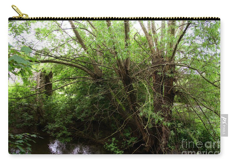 Landscape Carry-all Pouch featuring the photograph Magical Tree In Forest by Doc Braham