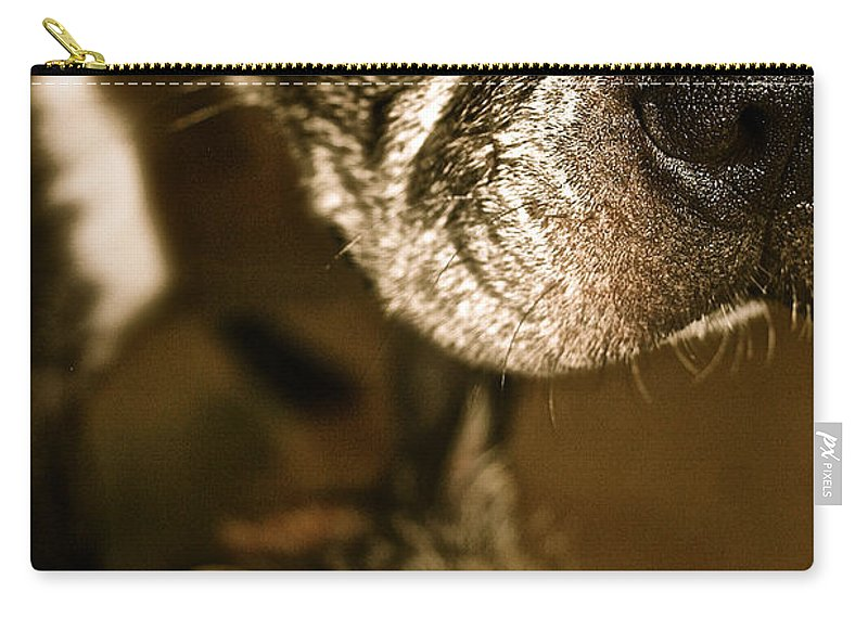 Animal Carry-all Pouch featuring the photograph Mine by Susan Herber
