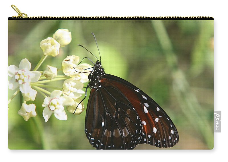 Butterfly Carry-all Pouch featuring the photograph Monarch Butterfly by Christiane Schulze Art And Photography