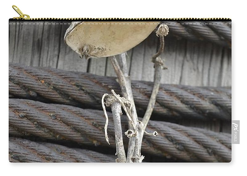 Butterfly Carry-all Pouch featuring the photograph Monarchs Rest by Randy J Heath