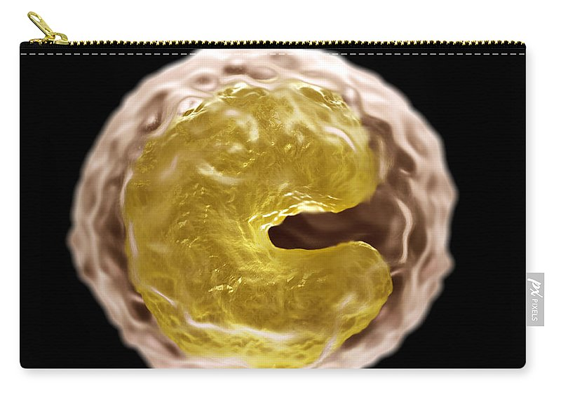 White Blood Cells Carry-all Pouch featuring the photograph Monocyte Cell by Science Picture Co