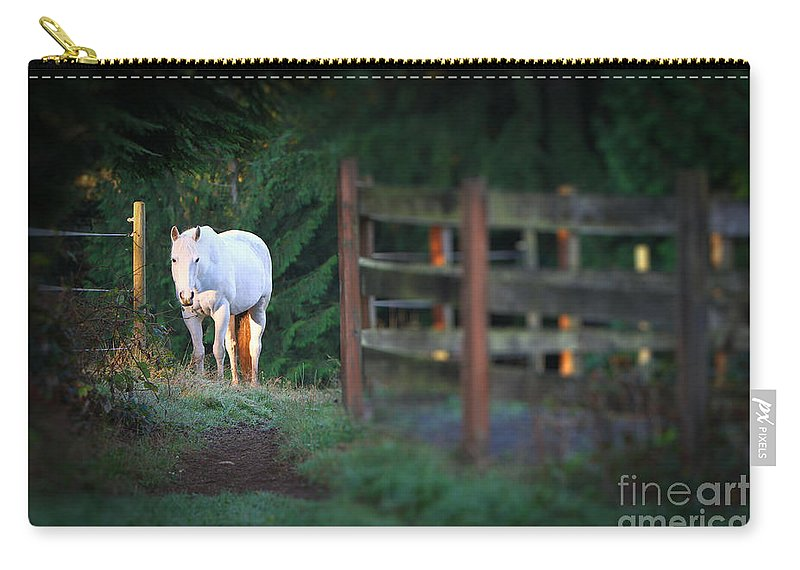 Illuminating Carry-all Pouch featuring the photograph Self Assurance by Michelle Twohig