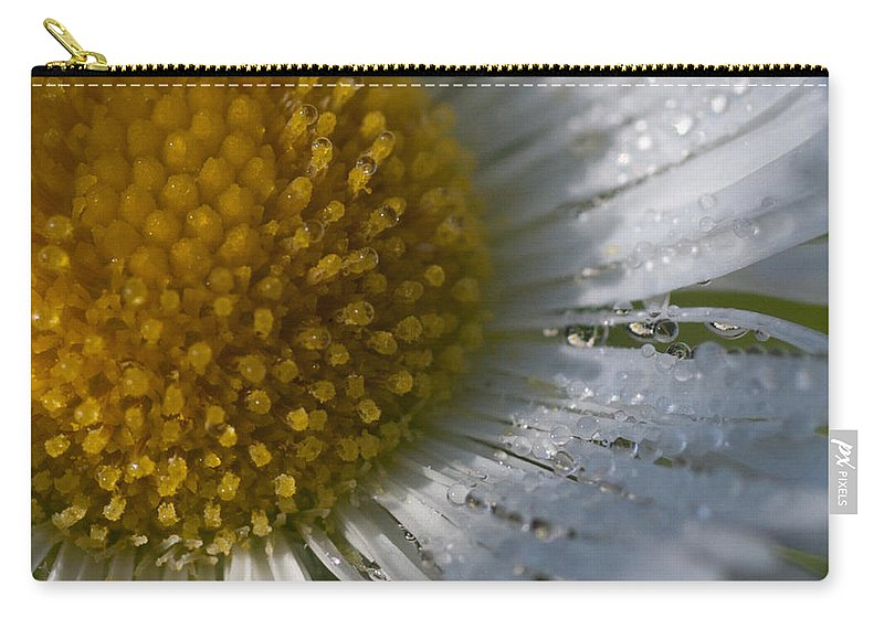Herbaceous Perennial Plant Carry-all Pouch featuring the photograph Mornings Dew by Jeff Folger
