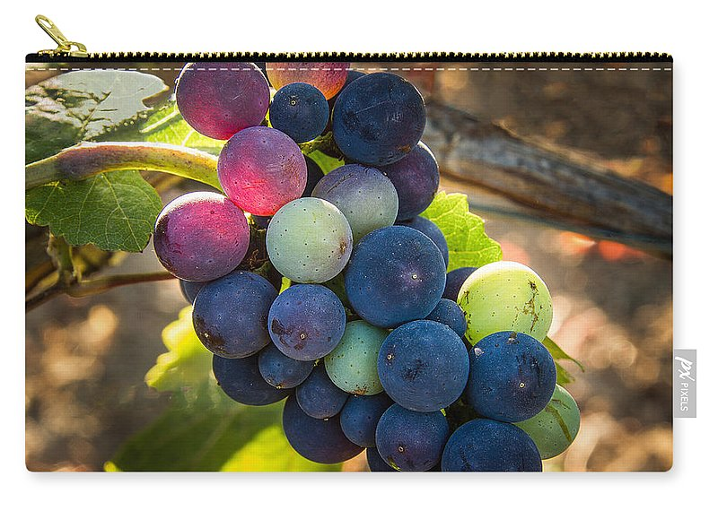 Vineyard Carry-all Pouch featuring the photograph Mosaic by Jean Noren