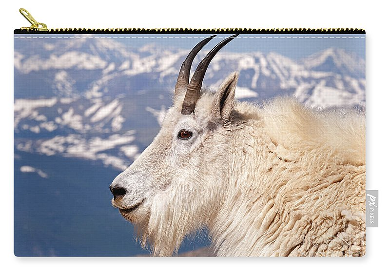 Arapaho National Forest Carry-all Pouch featuring the photograph Mountain Goat Portrait On Mount Evans by Fred Stearns