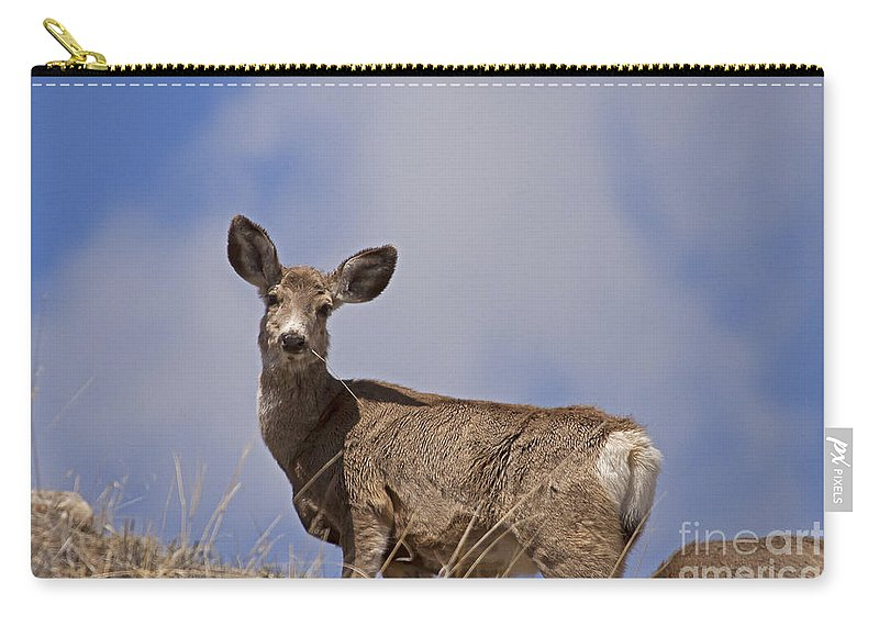 Deer Carry-all Pouch featuring the photograph Mule Deer  #0722 by J L Woody Wooden