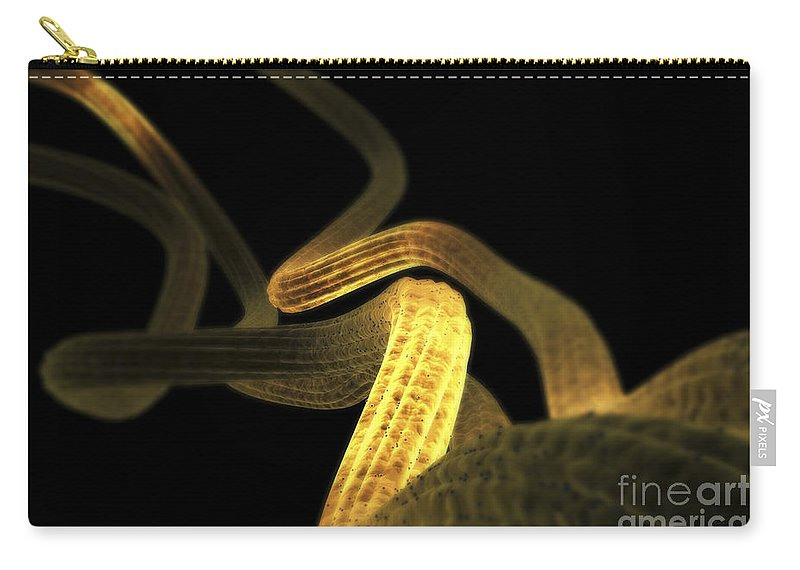 Biomedical Illustration Carry-all Pouch featuring the photograph Nerve Fibers by Science Picture Co