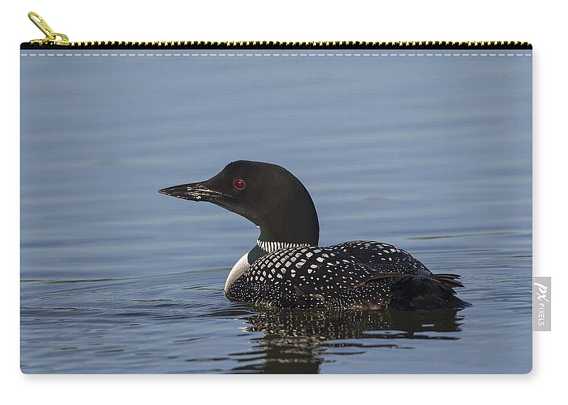 Doug Lloyd Carry-all Pouch featuring the photograph Nice Pose by Doug Lloyd