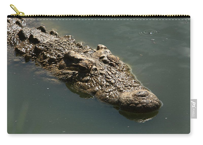 Nile Crocodile Carry-all Pouch featuring the photograph Nile Crocodile - Africa by Aidan Moran