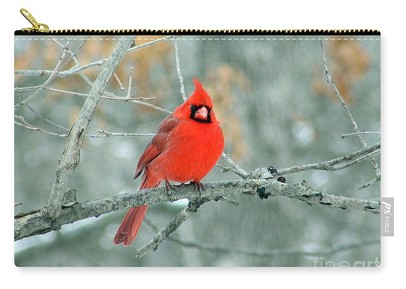 Cardinal Carry-all Pouch featuring the photograph Northern Cardinal 3 by Jamie Smith