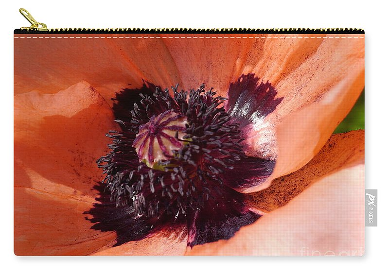Oriental Poppy Carry-all Pouch featuring the photograph Oriental Poppy by Christiane Schulze Art And Photography